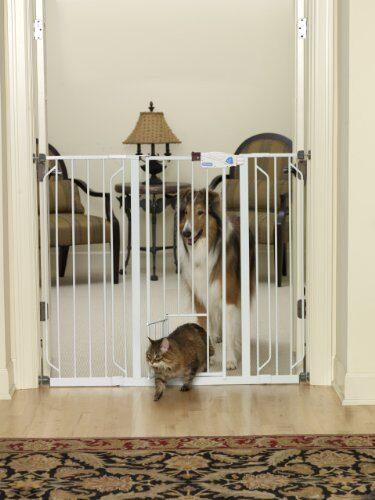 carlson_0941pw_extra_tall_walk_thru_gate_with_pet_door_b000jjfnjk-8625836