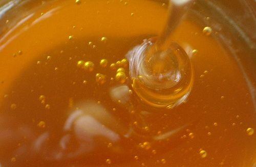 honey-9577677
